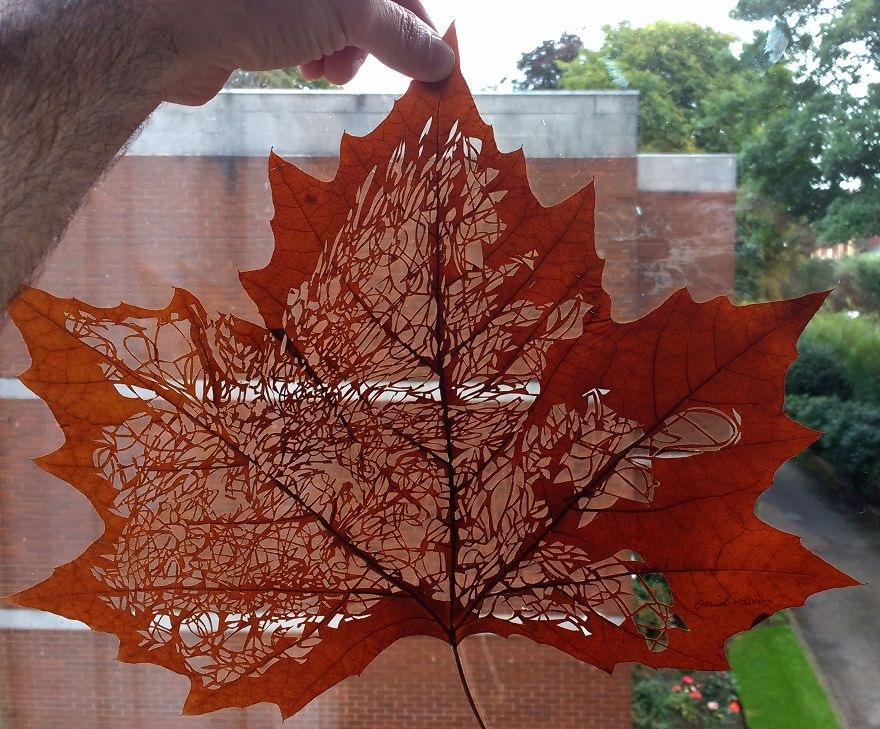 Artist Creates Leaf Art By Carefully Cutting Intricate Scenes