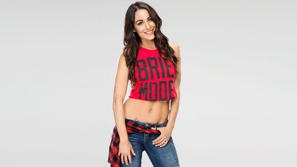 Facts About Nikki Bella The Fiancée Of John Cena
