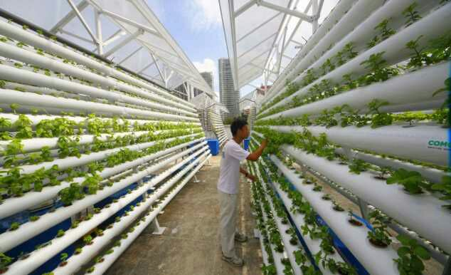 10 Green Technologies That Could Save Our Planet