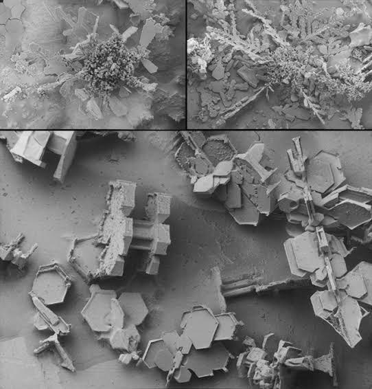 Super Weird microscope